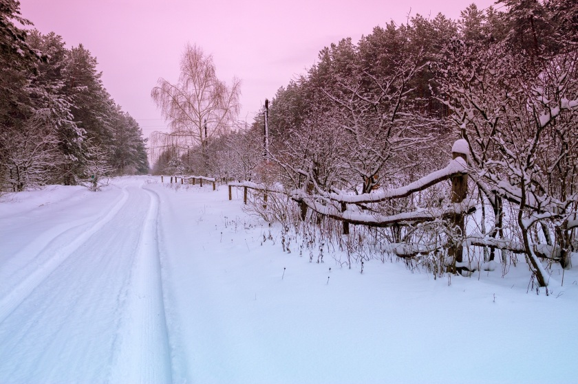 Rural winter snowy landscape